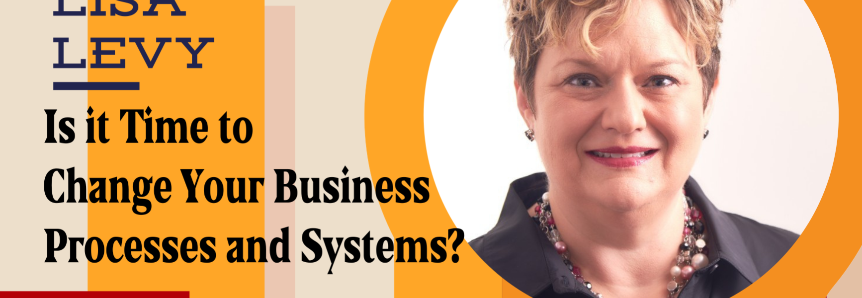 Is it Time to Change Your Business Processes and Systems? with Lisa Levy